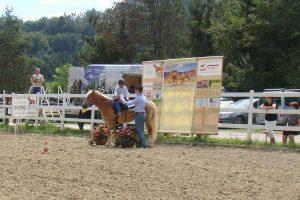golden ranch, konjeniški klub2